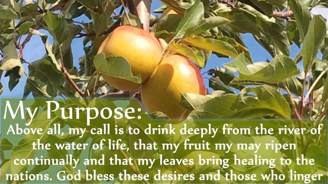 My Purpose Above all, my call is to drink deeply from the river of the water of life, that my fruit my may ripen continually and that my leaves bring healing to the nations. God bless these desires and those who linger here. mythoughts, thoughtsofgod, thoughts of God