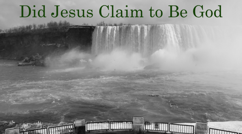 Did Jesus Claim to Be God , David Reese, Thoughts of God