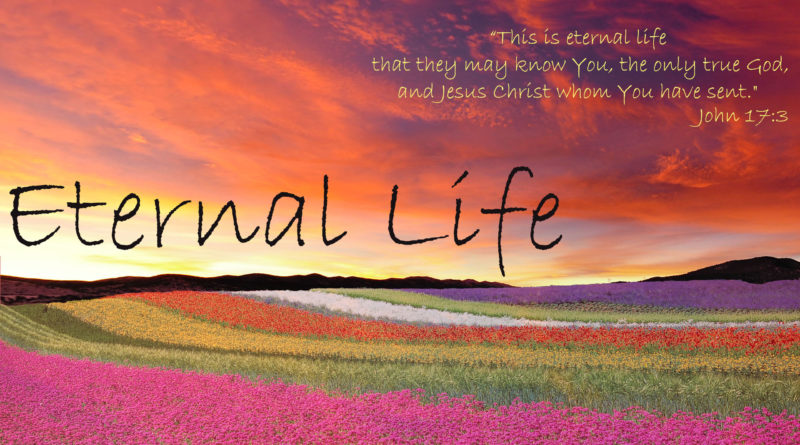 This is eternal life that they may know You the only true God and Jesus Christ whom You have sent, Eternal Life, Eternal, Eternity, Life, Jesus, David Reese, Thoughts, God, Thoughtsofgod, Thoughts of God, Forever, Joy